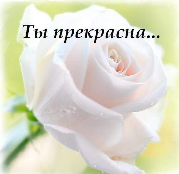 http://smotra.ru/data/img/users_imgs/37474/sm_users_img-117752.jpg