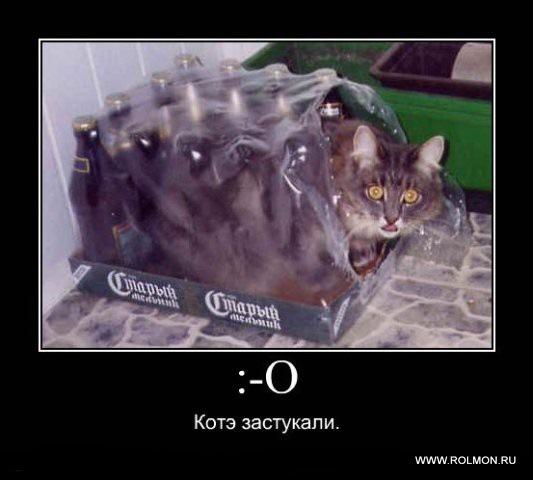 http://smotra.ru/data/img/users_imgs/41507/sm_users_img-176477.jpg