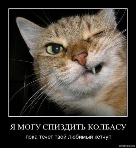 АВА ДЛЯ ВКОНТАКТА, ИНСТРУКЦИЯ: - 1 ...: rutawet.fh4u.net/9/smeshnie-avi-dlya-v-kontakte