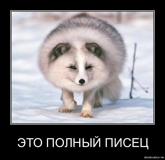 http://smotra.ru/data/img/users_imgs/47087/sm_users_img-200516.jpg