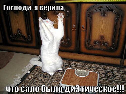 http://smotra.ru/data/img/users_imgs/50079/sm_users_img-192649.jpg